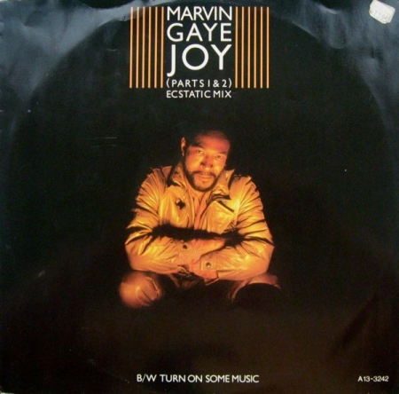 Marvin Gaye ‎– Joy (Parts 1 & 2) (Ecstatic Mix) / Turn On Some Music