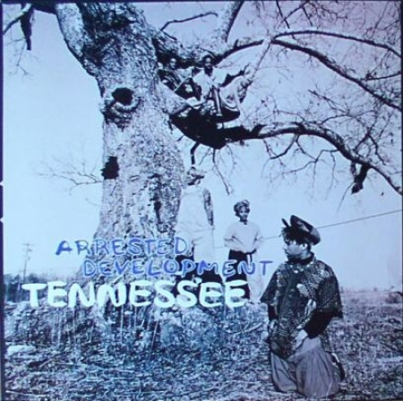 Arrested Development ‎– Tennessee