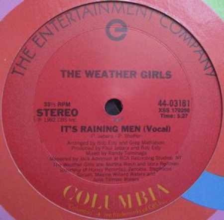 The Weather Girls ‎– It's Raining Men