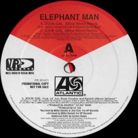 Elephant Man ?– Jook Gal (Remixes)
