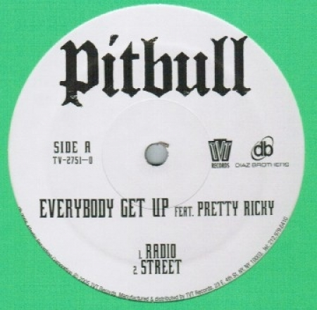 Pitbull ‎– Everybody Get Up (Feat. Pretty Ricky)