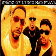 Shadz Of Lingo ‎– Mad Flavaz