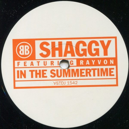 Shaggy Feat. Rayvon ‎– In The Summertime