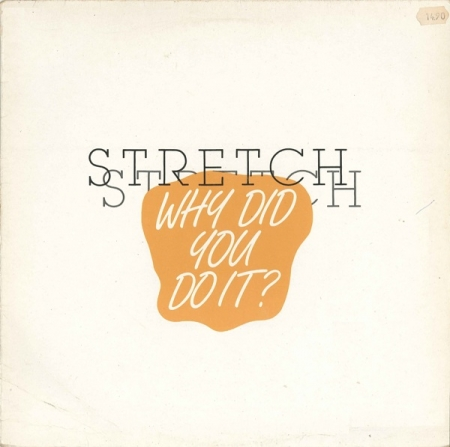 Stretch ‎– Why Did You Do It?