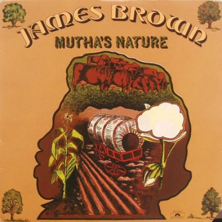 James Brown & New J.B.'s, The ‎– Mutha's Nature