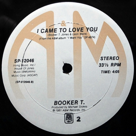 Booker T - I Came To Love You