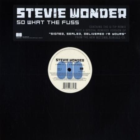 Stevie Wonder Feat. Q-Tip - So What The Fuss