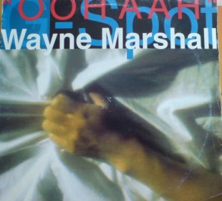 Wayne Marshall – G Spot (Ooh Aah)