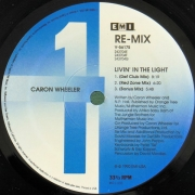 Caron Wheeler - Livin' In The Light (Re-Mix)