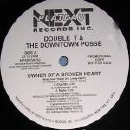 Double T & The Downtown Posse - Owner Of A Broken Heart