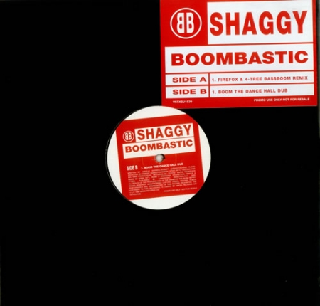 Shaggy ‎– Boombastic (Jungle Mixes)